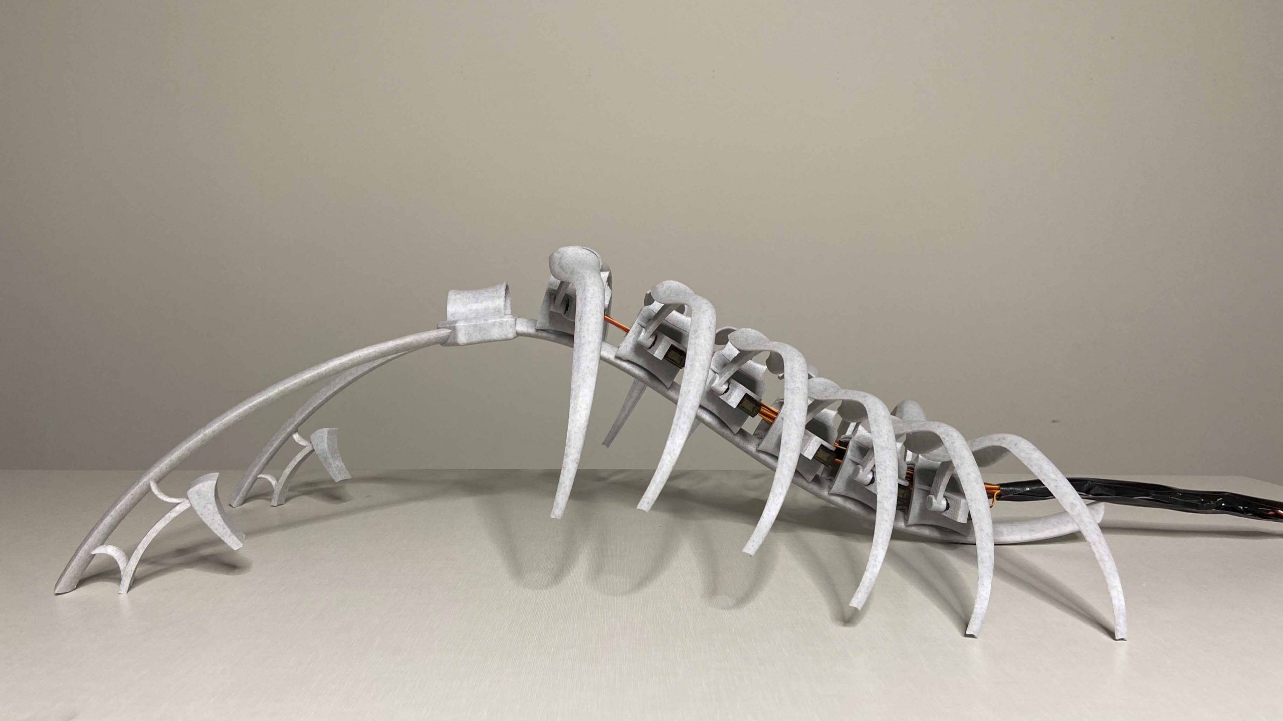 A futuristic robot wearable. A spine and rib-like structure is laid out on table showing the side view.