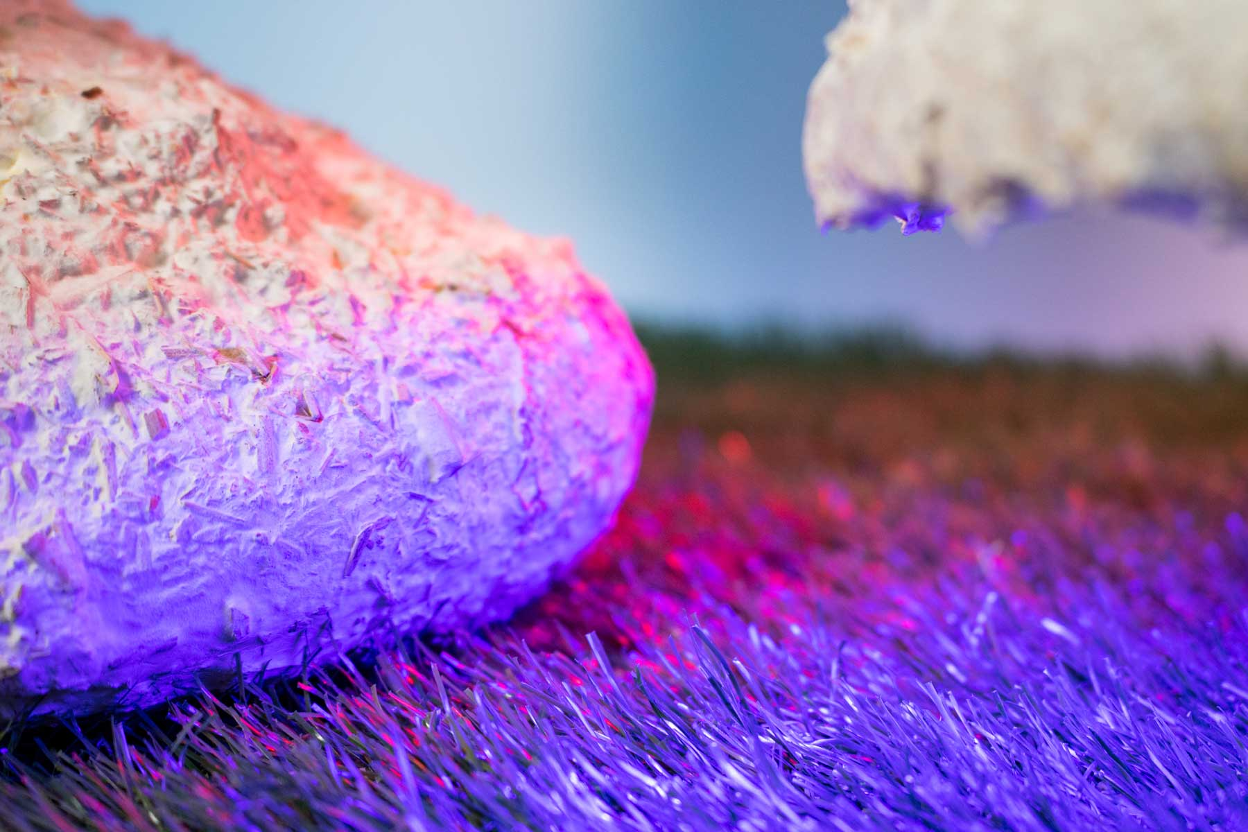 Close up on textured surface of white/cream organic sculptures. Pink and purple light shines on the sculptures.